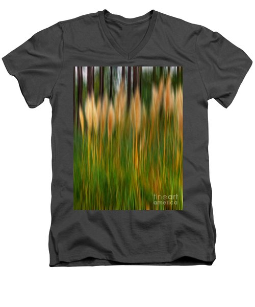 Abstract Of Movement Men's V-Neck T-Shirt
