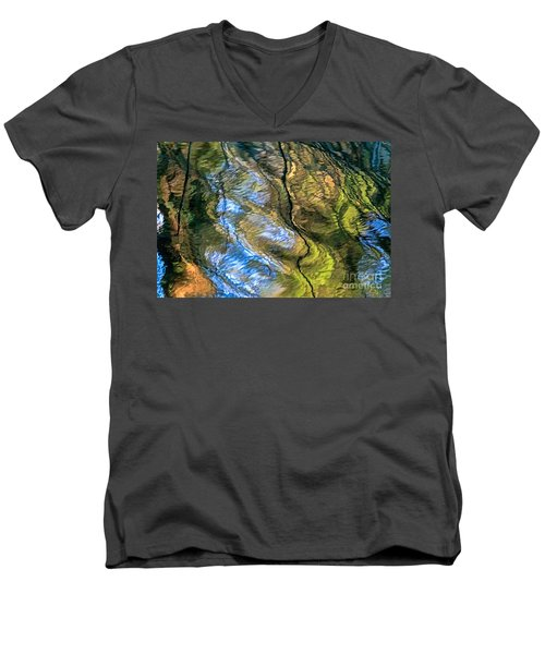 Abstract Of Nature Men's V-Neck T-Shirt