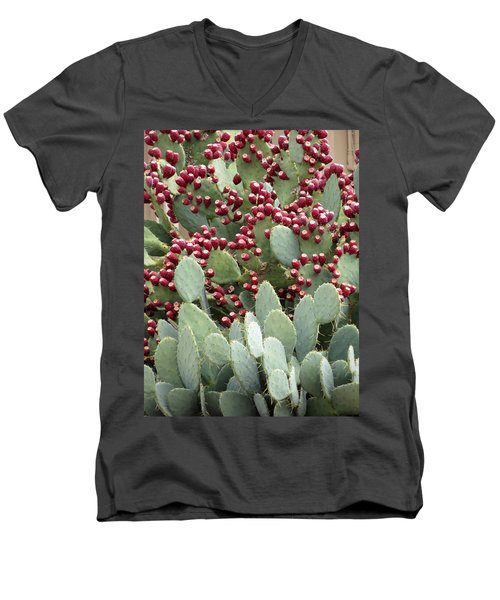 Men's V-Neck T-Shirt featuring the photograph Abundance Of Fruit by Laurel Powell