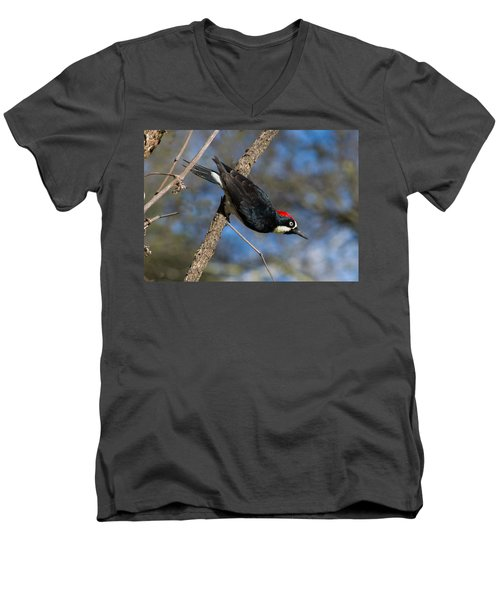 Men's V-Neck T-Shirt featuring the photograph Acorn Woodpecker by Rima Biswas