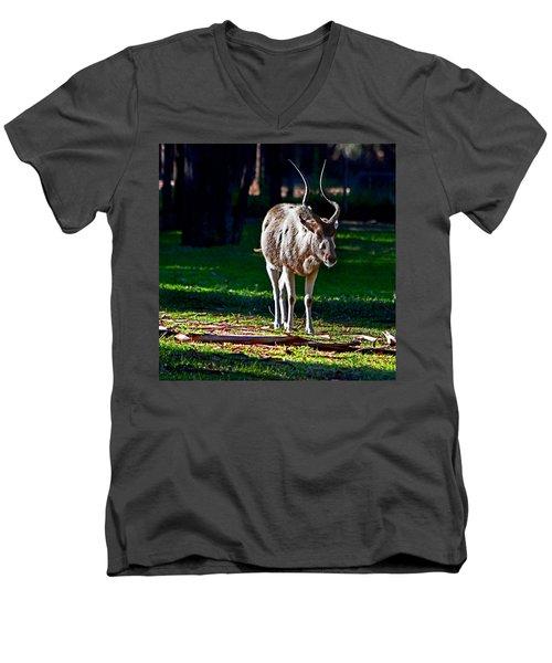 Addax Men's V-Neck T-Shirt