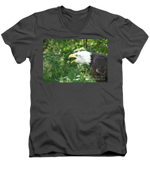Men's V-Neck T-Shirt featuring the photograph Adler Raptor Bald Eagle Bird Of Prey Bird by Paul Fearn