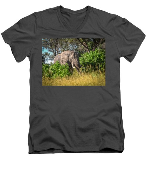 African Bush Elephant Men's V-Neck T-Shirt