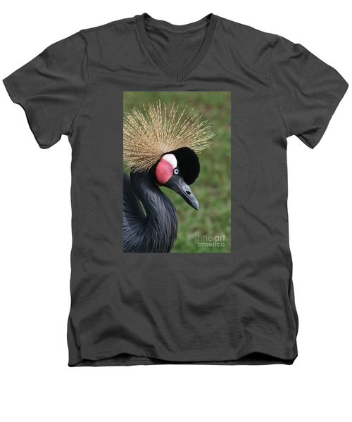 African Crowned Crane #2 Men's V-Neck T-Shirt
