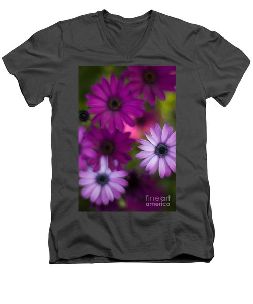 African Daisy Collage Men's V-Neck T-Shirt