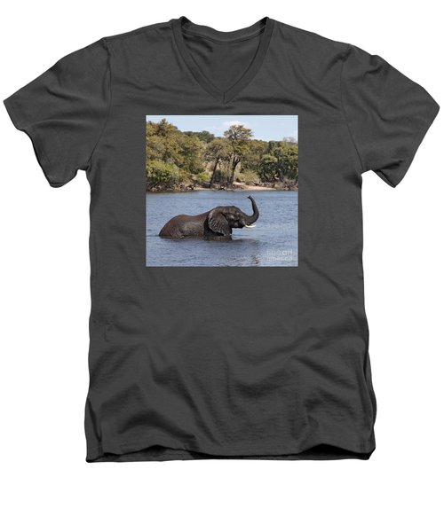 Men's V-Neck T-Shirt featuring the photograph African Elephant In Chobe River  by Liz Leyden