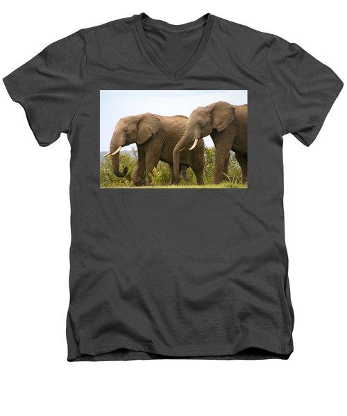 African Elephants Men's V-Neck T-Shirt by Menachem Ganon
