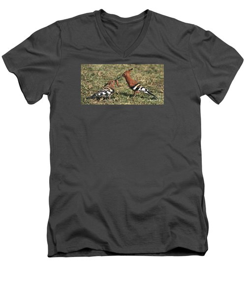 Men's V-Neck T-Shirt featuring the photograph African Hoopoe Feeding Young by Liz Leyden
