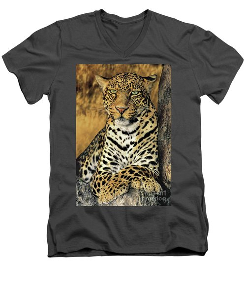 African Leopard Portrait Wildlife Rescue Men's V-Neck T-Shirt by Dave Welling
