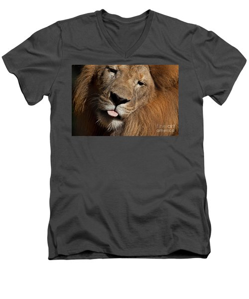 Men's V-Neck T-Shirt featuring the photograph African Lion by Meg Rousher