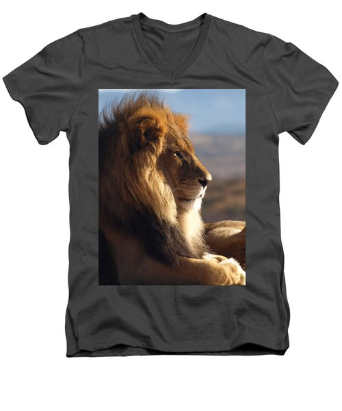 African Lion Men's V-Neck T-Shirt