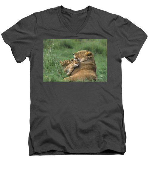 African Lions Mother And Cubs Tanzania Men's V-Neck T-Shirt by Dave Welling