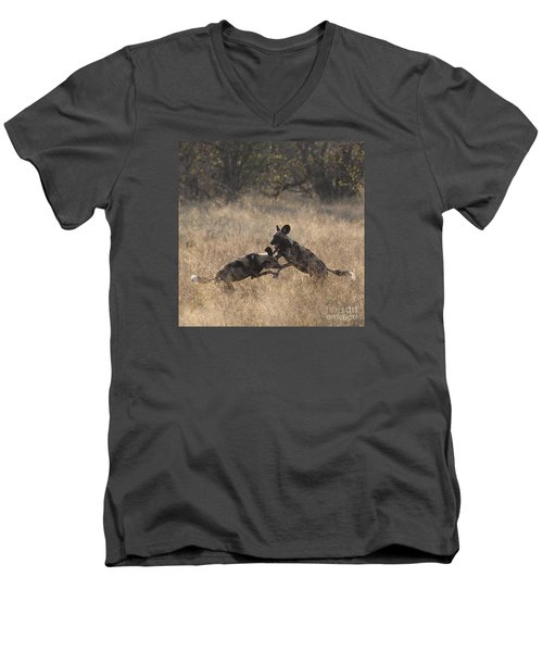 Men's V-Neck T-Shirt featuring the photograph African Wild Dogs Play-fighting by Liz Leyden