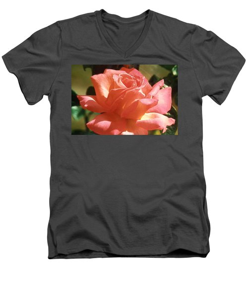 Men's V-Neck T-Shirt featuring the photograph Afternoon Delight by Belinda Lee