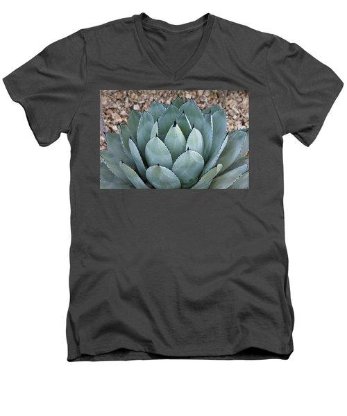 Agave Men's V-Neck T-Shirt by Lana Enderle