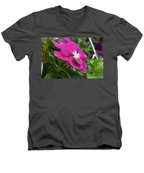 Men's V-Neck T-Shirt featuring the photograph Ailanthus Webworm Moth Visiting My Garden by Verana Stark