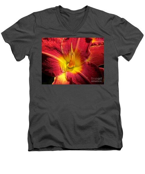 Akemi Men's V-Neck T-Shirt by France Laliberte