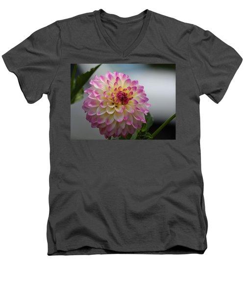 Ala Mode Men's V-Neck T-Shirt by Jeanette C Landstrom