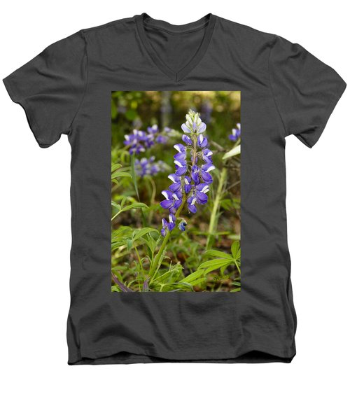 Alaskan Lupine In Denali Park Men's V-Neck T-Shirt