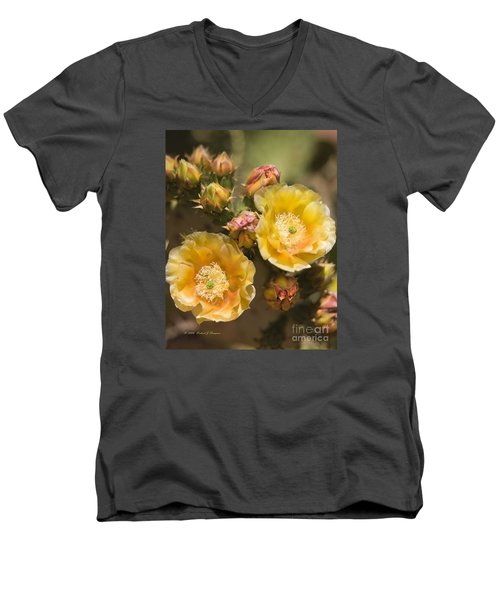 'albispina' Cactus Blooms Men's V-Neck T-Shirt