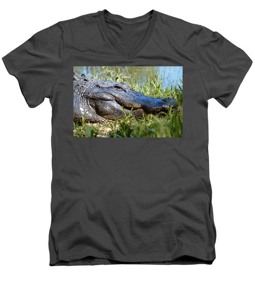 Alligator Smiling Men's V-Neck T-Shirt