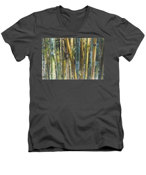 All The Colors Of The Bamboo Rainbow Men's V-Neck T-Shirt
