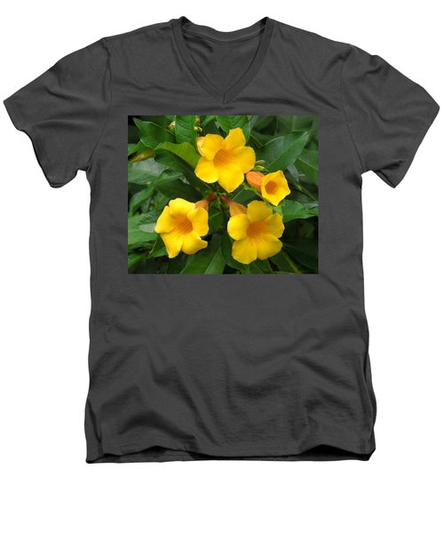 Allamanda Men's V-Neck T-Shirt