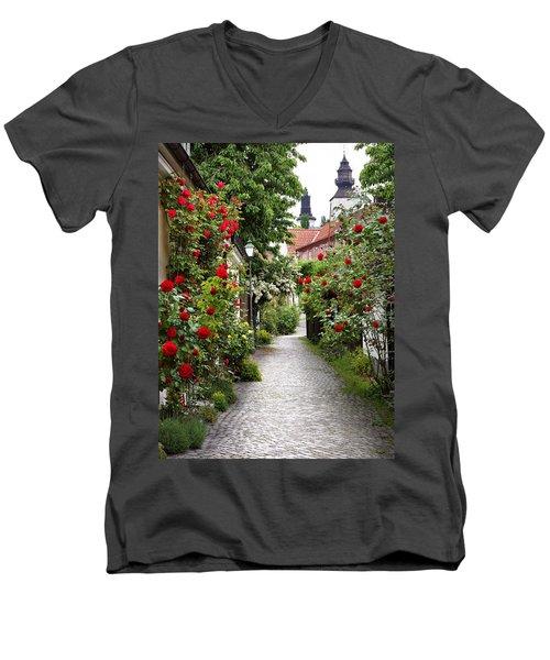 Alley Of Roses Men's V-Neck T-Shirt