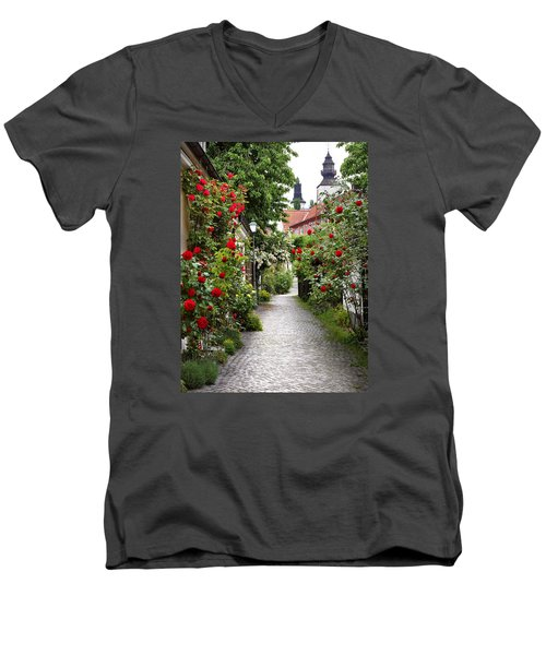 Alley Of Roses Men's V-Neck T-Shirt