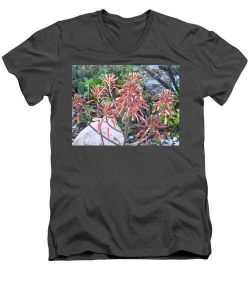 Men's V-Neck T-Shirt featuring the photograph Aloe In Bloom by Belinda Lee