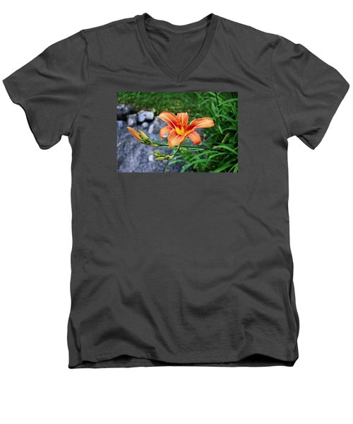 Along The Rocks Men's V-Neck T-Shirt
