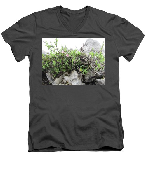 Men's V-Neck T-Shirt featuring the photograph Alpine Beauty by Pema Hou