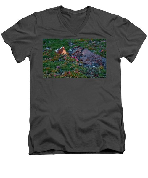 Men's V-Neck T-Shirt featuring the photograph Alpine Blush by Jim Garrison