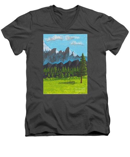 Alpine Meadow Men's V-Neck T-Shirt by David Jackson
