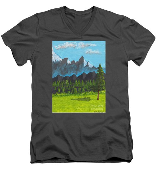 Alpine Meadow Men's V-Neck T-Shirt