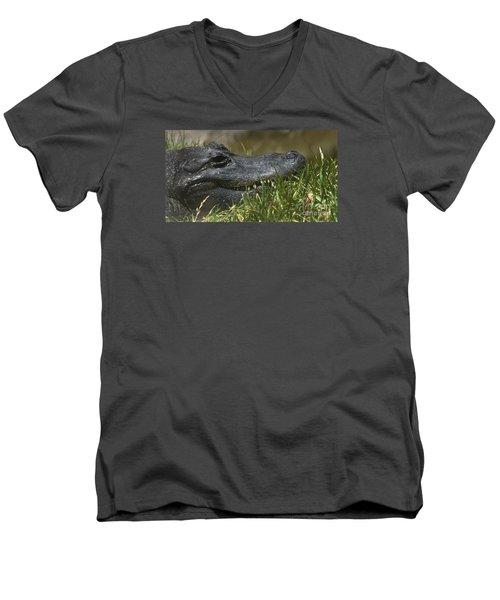 Men's V-Neck T-Shirt featuring the photograph American Alligator Closeup by David Millenheft
