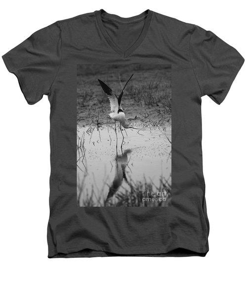 American Avocet Reflection Men's V-Neck T-Shirt