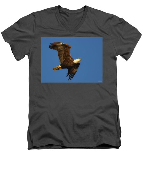 Men's V-Neck T-Shirt featuring the photograph American Bald Eagle Close-ups Over Santa Rosa Sound With Blue Skies by Jeff at JSJ Photography