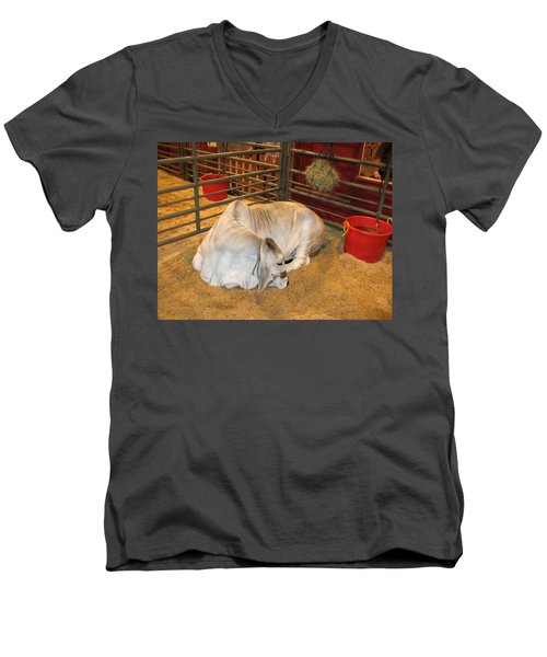 Men's V-Neck T-Shirt featuring the photograph American Brahman Heifer by Connie Fox