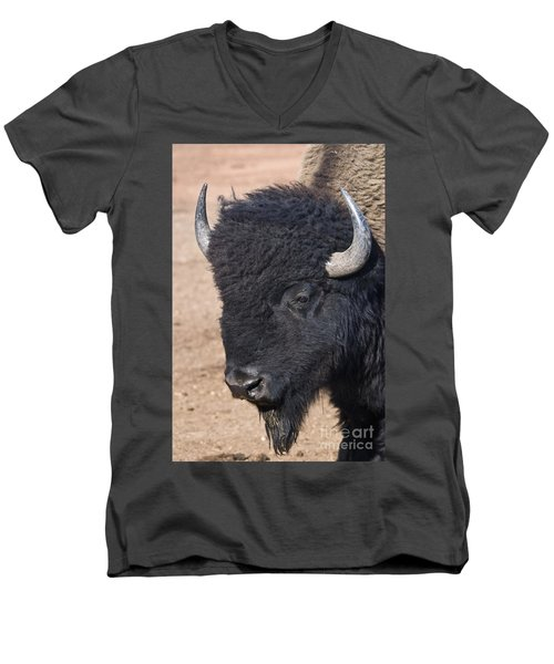 American Buffalo Men's V-Neck T-Shirt