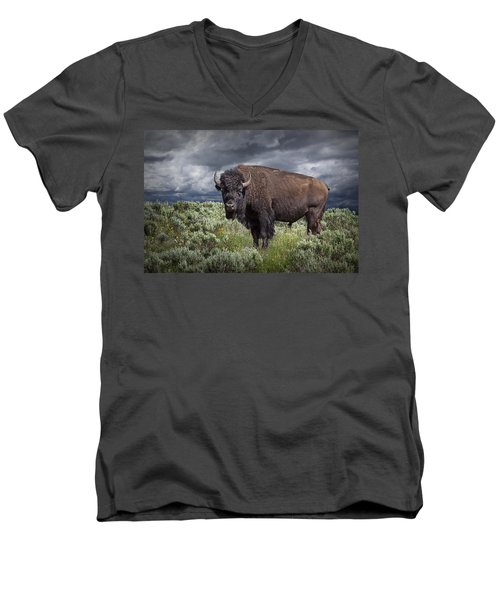 American Buffalo Or Bison In Yellowstone Men's V-Neck T-Shirt