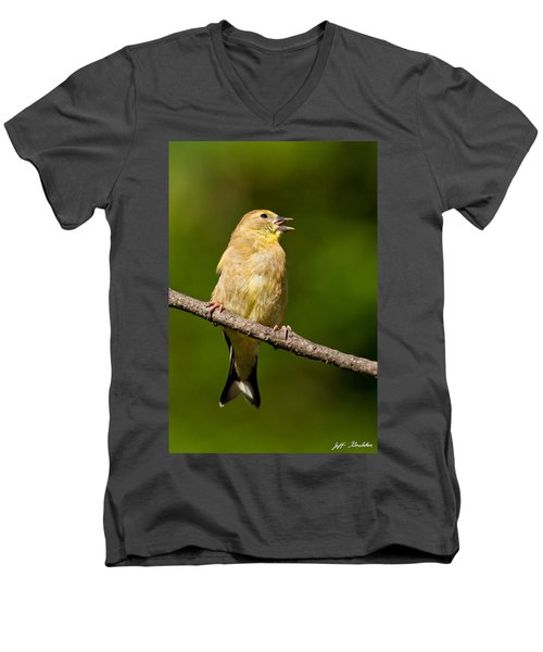 American Goldfinch Singing Men's V-Neck T-Shirt