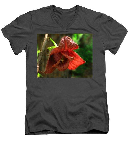 American Pawpaw Men's V-Neck T-Shirt