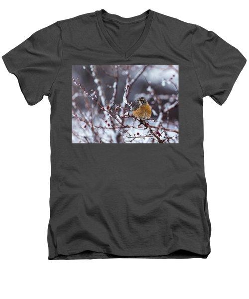 American Robin Men's V-Neck T-Shirt