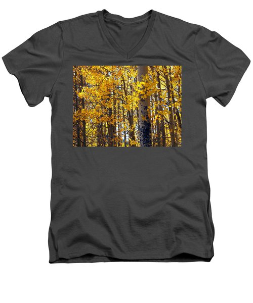 Among The Aspen Trees In Fall Men's V-Neck T-Shirt