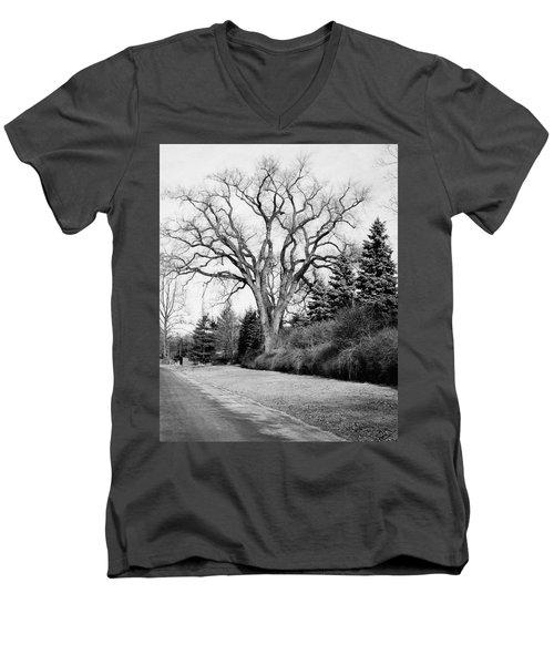 An Elm Tree At The Side Of A Road Men's V-Neck T-Shirt