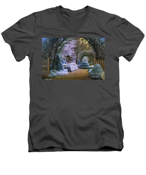 An English Garden Men's V-Neck T-Shirt