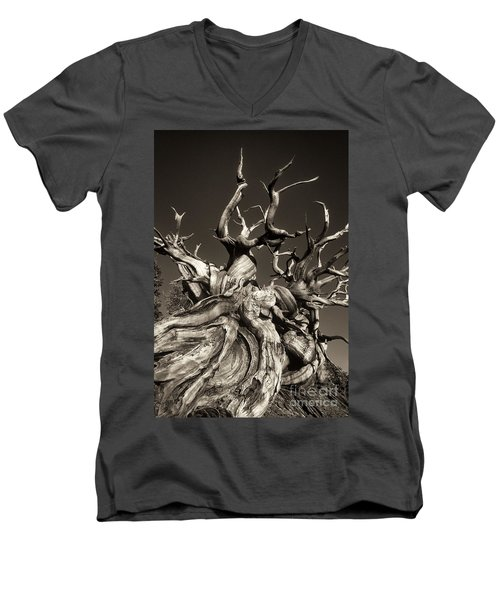 Ancient Bristlecone Pine In Black And White Men's V-Neck T-Shirt