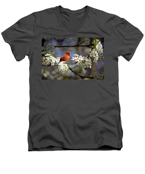 And A Carninal In A Pear Tree Men's V-Neck T-Shirt by Bonnie Willis