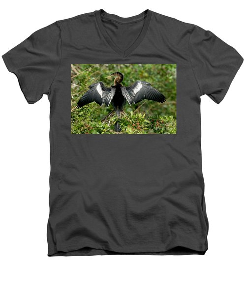 Anhinga Sunning Men's V-Neck T-Shirt by Anthony Mercieca